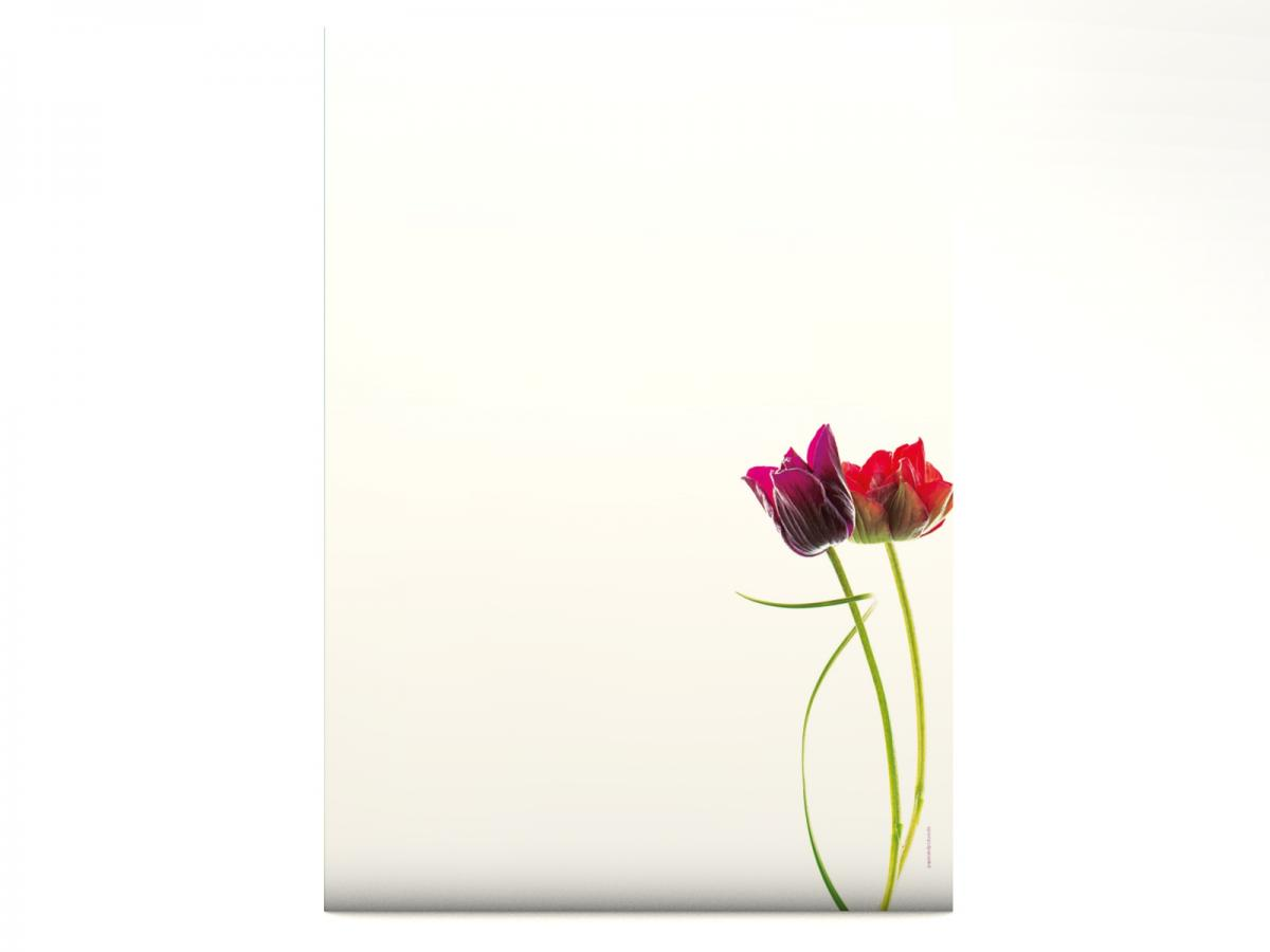 Motivpapier Flowers on White - Motiv A Briefpapier mit Motiv